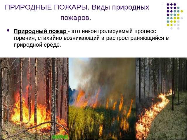 ПРИРОДНЫЕ ПОЖАРЫ. Виды природных пожаров. Природный пожар - это неконтролируе...