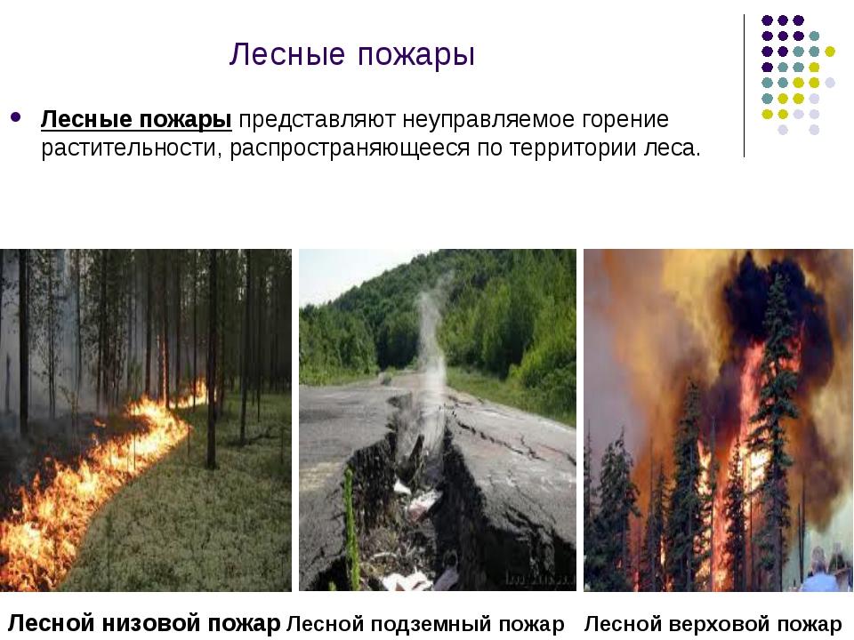 Лесные пожары Лесные пожары представляют неуправляемое горение растительности...