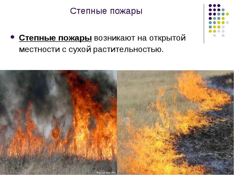 Степные пожары Степные пожары возникают на открытой местности с сухой растите...