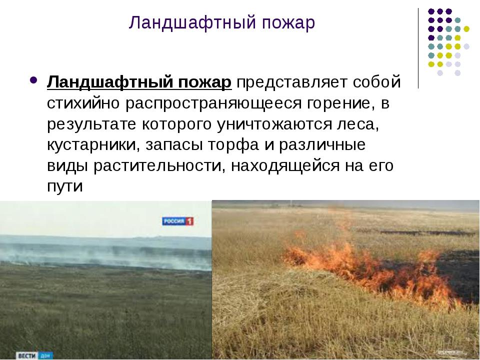 Ландшафтный пожар Ландшафтный пожар представляет собой стихийно распространяю...