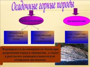 неорганические органические Обломочные Песок, пемза, глина Химические Гипс по