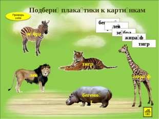 Подбери́ плака́тики к карти́нкам бегемо́т ле͞в зе́бра жира́ф тигр зе́бра ле͞в