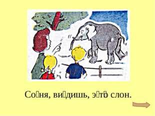 Со́ня, ви́дишь, э́т͞о слон.