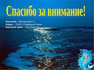 * х.Сухой 2010г Картинки - http://yandex.ru Видео - DWD «Подводный мир» Звуко