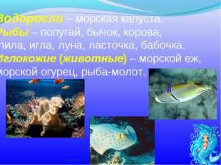 Водоросли – морская капуста. Рыбы – попугай, бычок, корова, пила, игла, луна,
