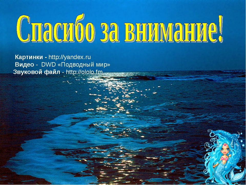 * х.Сухой 2010г Картинки - http://yandex.ru Видео - DWD «Подводный мир» Звуко...