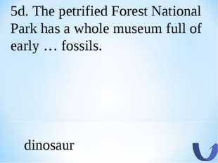 5d. The petrified Forest National Park has a whole museum full of early … fos