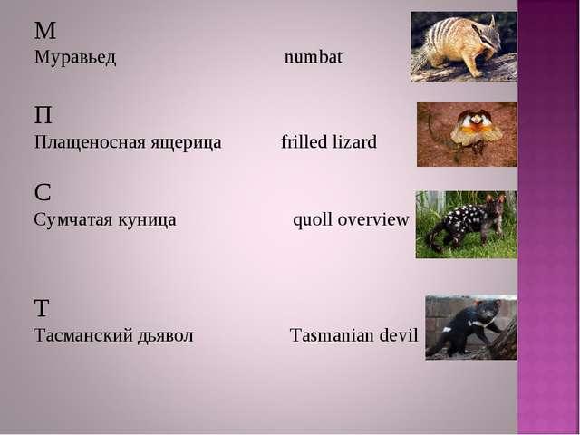 М Муравьед numbat П Плащеносная ящерица frilled lizard С Сумчатая куница quol...