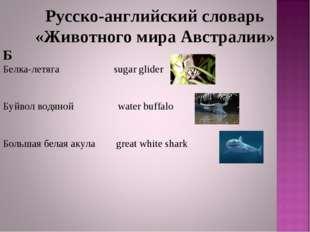 Русско-английский словарь «Животного мира Австралии» Б Белка-летяга sugar gli