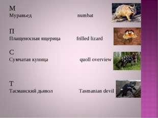 М Муравьед numbat П Плащеносная ящерица frilled lizard С Сумчатая куница quol