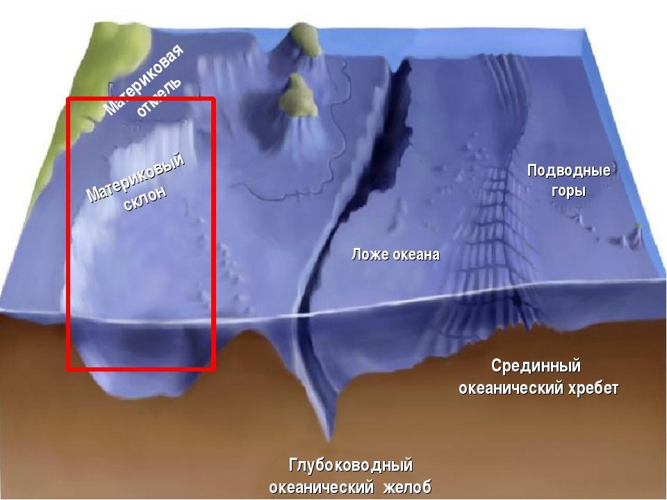 Рельеф дна Мирового океана Материковая отмель Материковый склон Ложе океана Г...