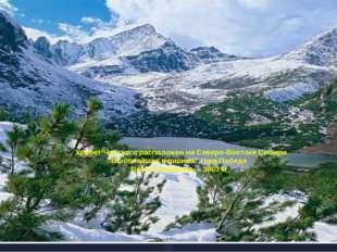 Хребет Черского расположен на Северо-Востоке Сибири Высочайшая вершина: гора
