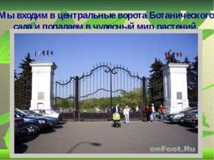 Мы входим в центральные ворота Ботанического сада и попадаем в чудесный мир р