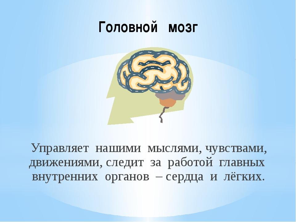 Головной мозг Управляет нашими мыслями, чувствами, движениями, следит за рабо...
