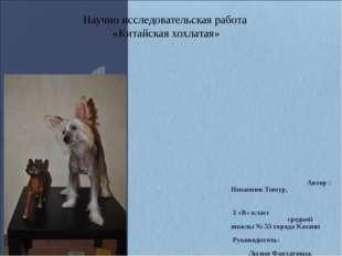 Автор : Низамиев Тимур, 3 «В» класс средней школы № 55 города Казани Руковод