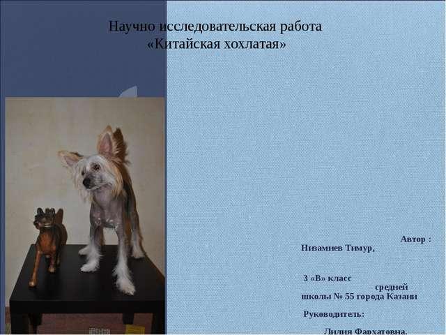 Автор : Низамиев Тимур, 3 «В» класс средней школы № 55 города Казани Руковод...