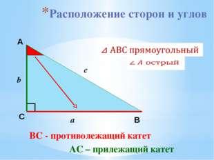 Расположение сторон и углов А С В b c a ВС - противолежащий катет АС – прилеж