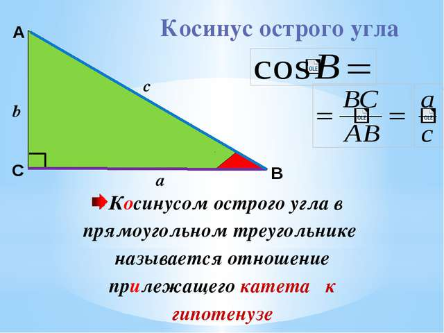 А c В С Косинус острого угла Косинусом острого угла в прямоугольном треуголь...