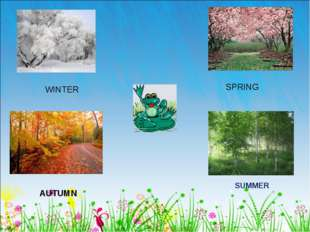 WINTER AUTUMN SPRING SUMMER