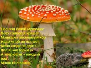 Пел под ёлкой мухомор: Всех грибов я краше! Мошкары писклявый хор Надо мной