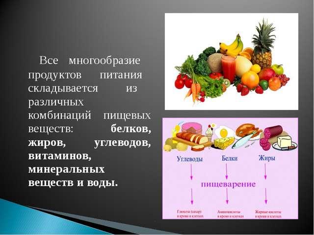 Все многообразие продуктов питания складывается из различных комбинаций пище...