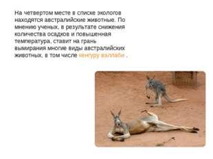 На четвертом месте в списке экологов находятся австралийские животные. По мне