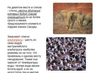 На девятом месте в списке - слоны, места обитания которых будут также сокраща