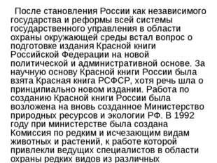 После становления России как независимого государства и реформы всей системы