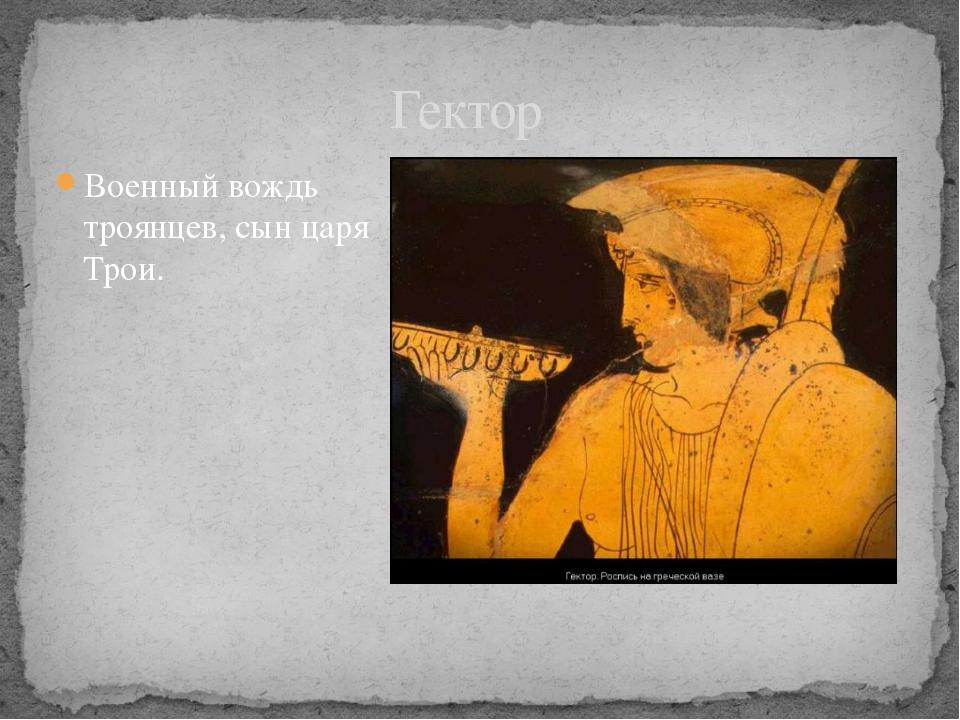 Военный вождь троянцев, сын царя Трои. Гектор