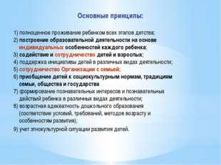 Основные принципы: 1) полноценное проживание ребенком всех этапов детства; 2)