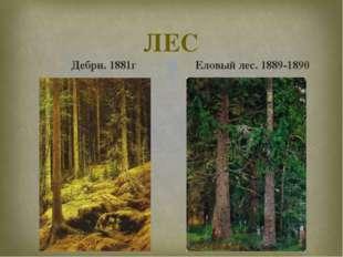 ЛЕС Дебри. 1881г Еловый лес. 1889-1890 