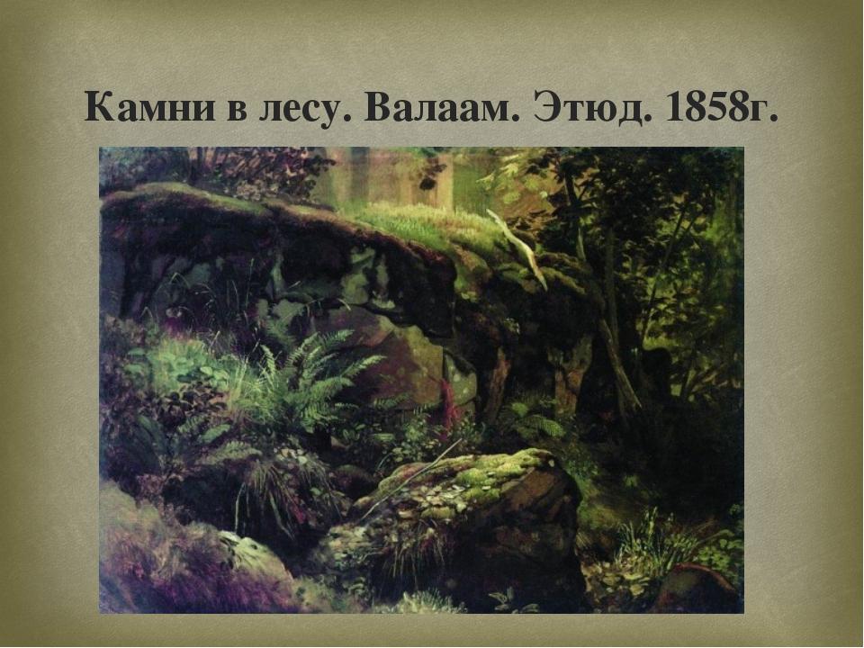 Камни в лесу. Валаам. Этюд. 1858г. 