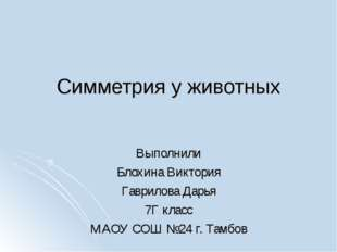 Симметрия у животных Выполнили Блохина Виктория Гаврилова Дарья 7Г класс МАОУ