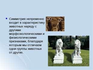 Симметрия непременно входит в характеристику животных наряду с другими морфоэ