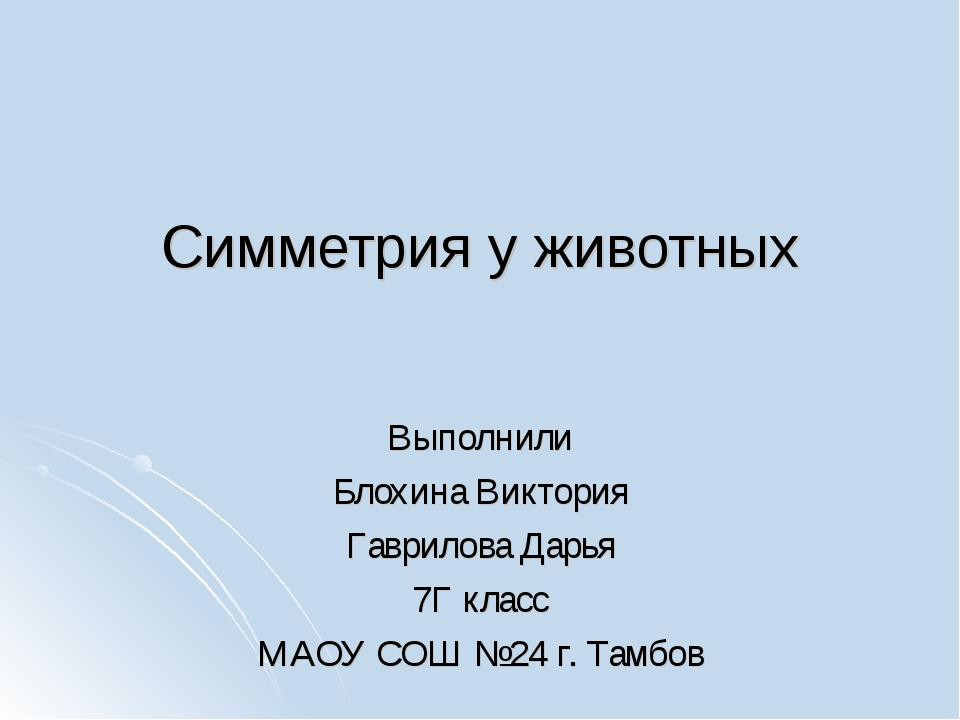 Симметрия у животных Выполнили Блохина Виктория Гаврилова Дарья 7Г класс МАОУ...