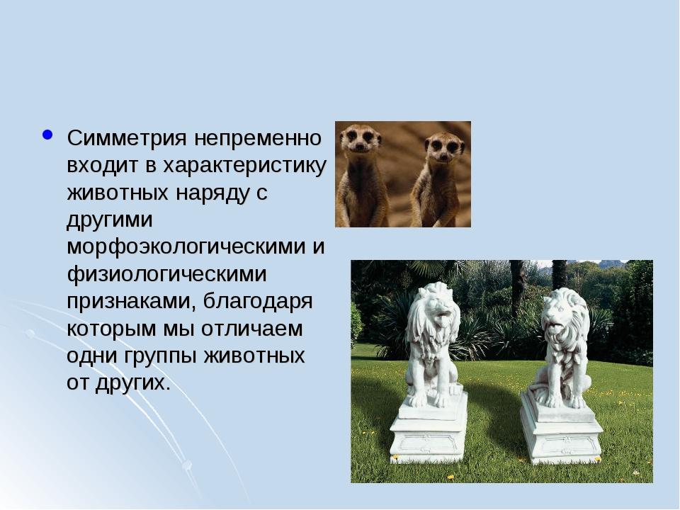 Симметрия непременно входит в характеристику животных наряду с другими морфоэ...
