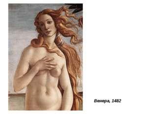 Венера, 1482