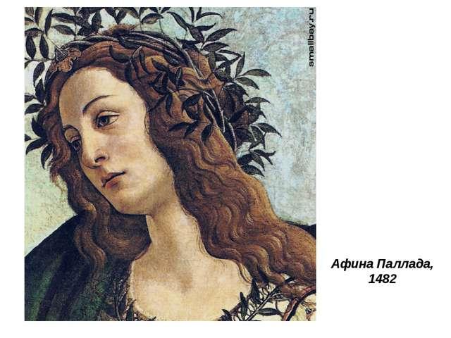 Афина Паллада, 1482