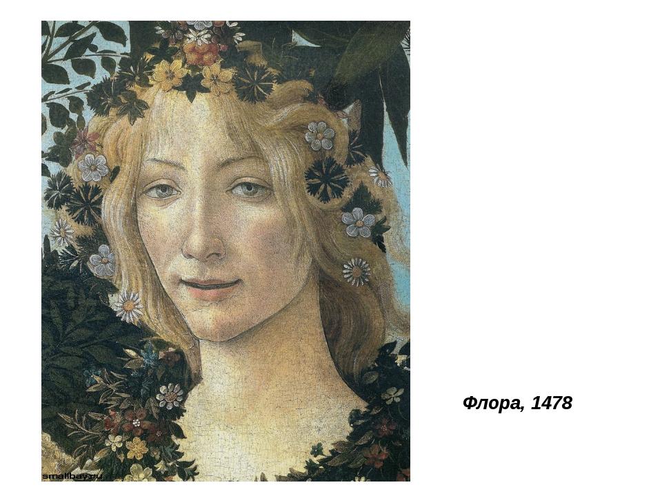 Флора, 1478