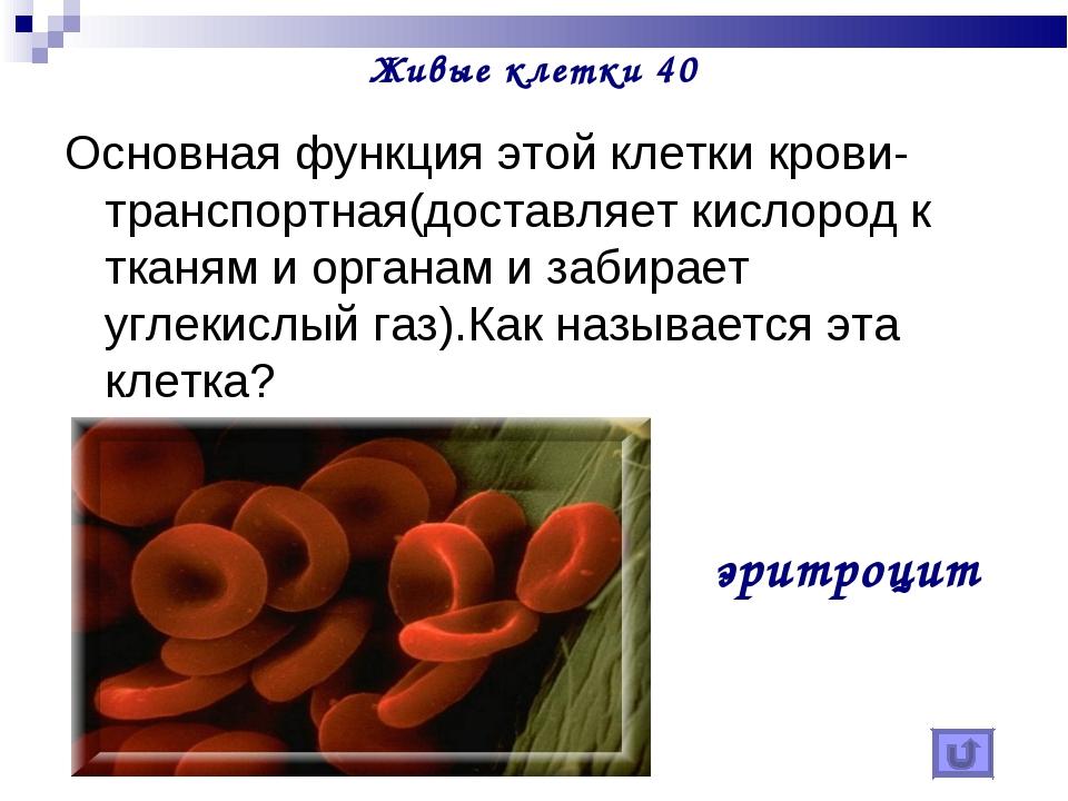 Живые клетки 40 Основная функция этой клетки крови- транспортная(доставляет к...