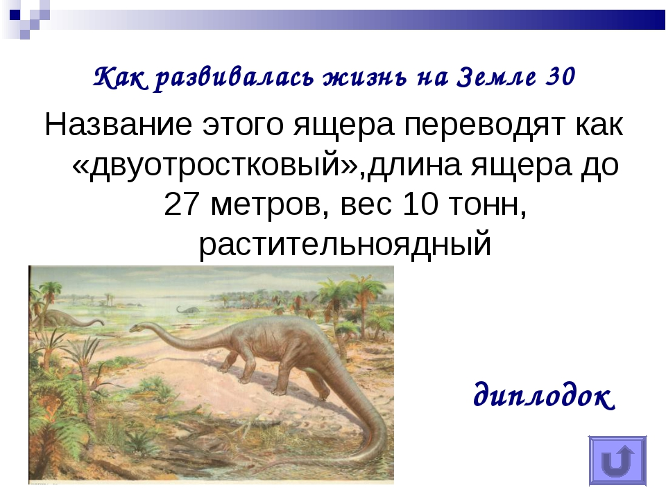 Как развивалась жизнь на Земле 30 Название этого ящера переводят как «двуотро...