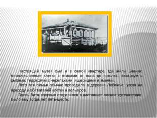 . Настоящий музей был и в самой квартире, где жили Бианки: многочисленные кл