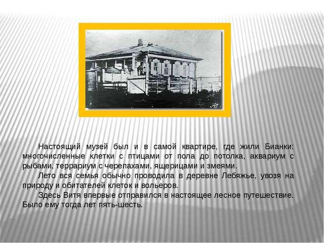 . Настоящий музей был и в самой квартире, где жили Бианки: многочисленные кл...