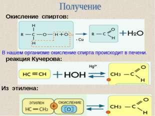 реакция Кучерова: Окисление спиртов: Из этилена: В нашем организме окисление
