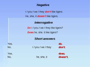 Negative I / you / we / they don't like tigers. He, she, it doesn't like tige