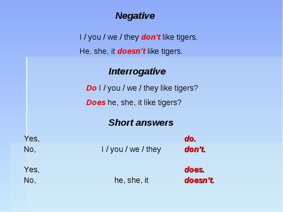 Negative I / you / we / they don't like tigers. He, she, it doesn't like tige...