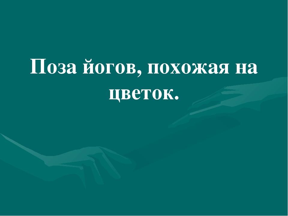 Царица русских лесов. Берёза