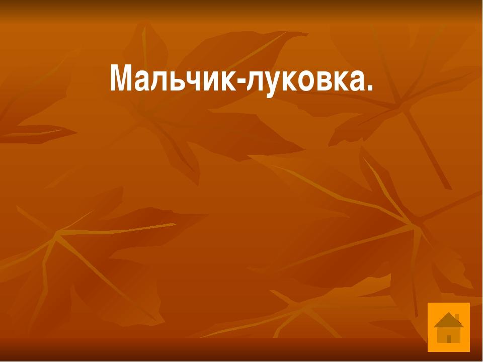 Самая известная площадь Москвы. Красная площадь