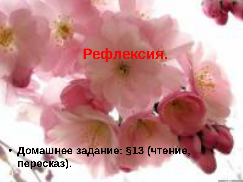 Рефлексия. Домашнее задание: §13 (чтение, пересказ).