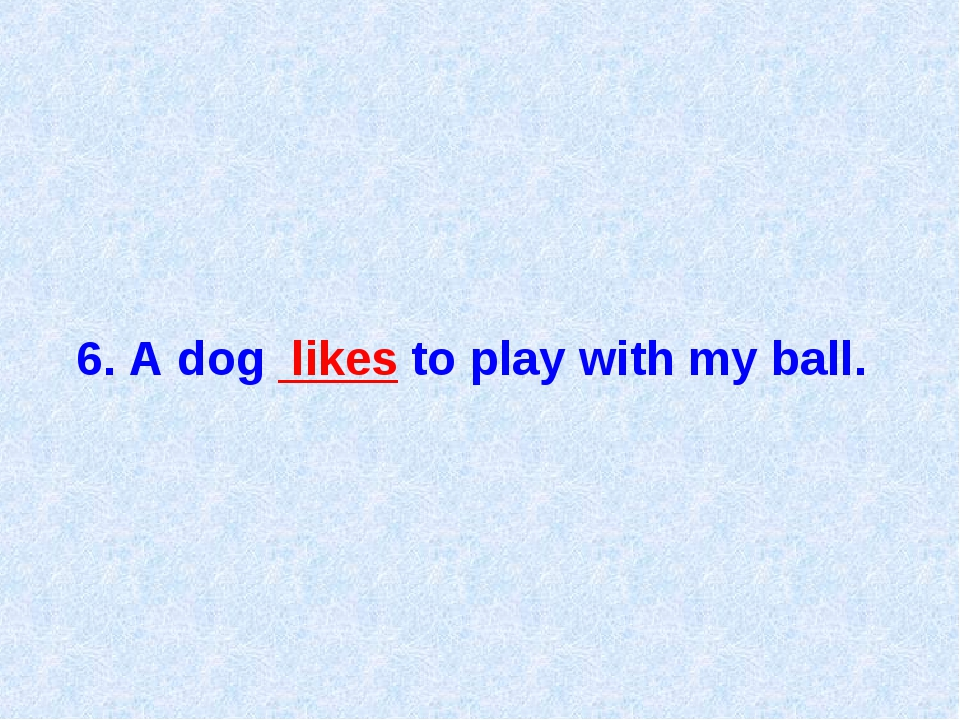 6. A dog likes to play with my ball.